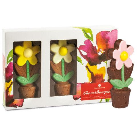 dac9e5c1b6c68 0203-PLXXXX Chocolissimo - Chocolaterie 250 g Chocolissimo ...